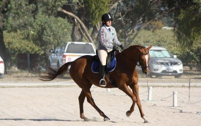 Annual Dressage Day – March 2021